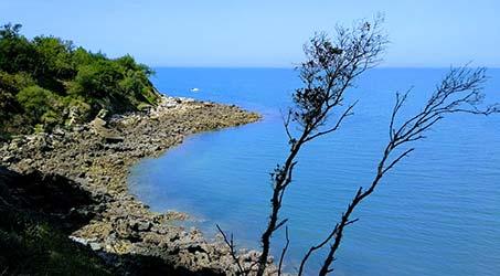 Les paysages de l'Ile d'Aix