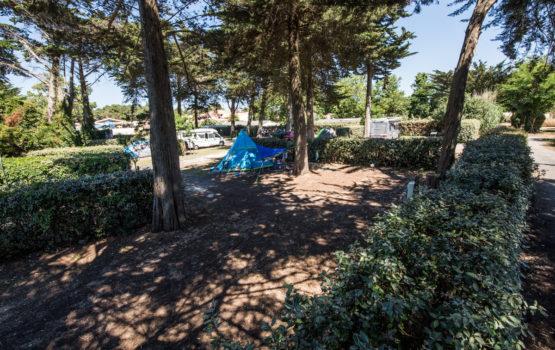 campinglesgrenettes_Iledere-9095-bd