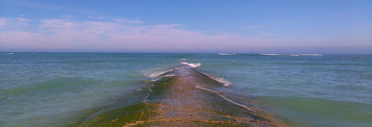 séjour bord de plage ile de Ré