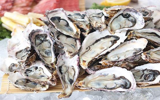 les huîtres de l'île de ré