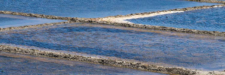 les marais salants de l'île de ré